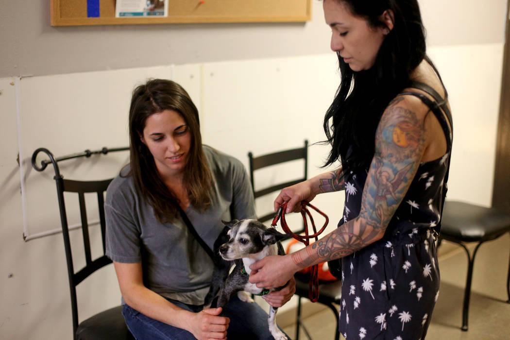 Heather Serviolo, izquierda, y Crystal Mesina sostienen a Chloe a quien están a punto de adopt ...