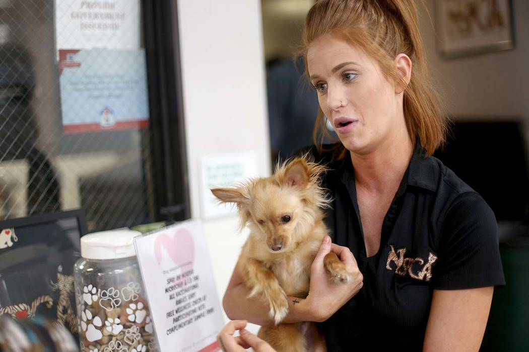 La coordinadora de adopciones, Shelby Haycock, sostiene a Fetty, una perra que adoptó en el re ...