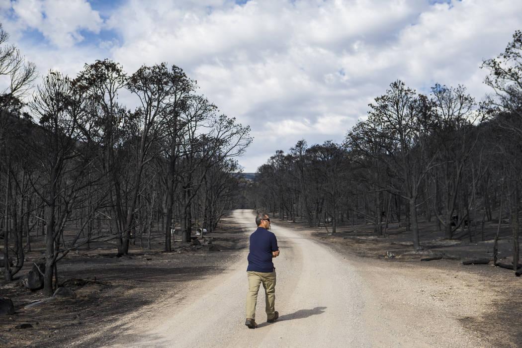 Ben Roberts, jefe de recursos naturales del Parque Nacional Great Basin, examina los daños cau ...
