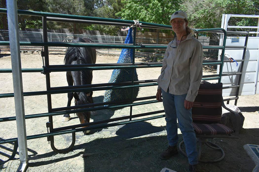 Christiane Hayashi adoptó a un caballo después de que este pasara por su proceso de entrenami ...