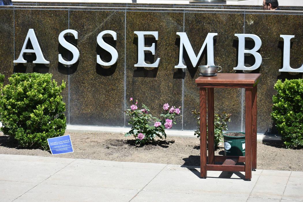 Se plantaron dos rosales para recordar la vida del asambleísta Tyrone Thompson. Sábado 1 de j ...