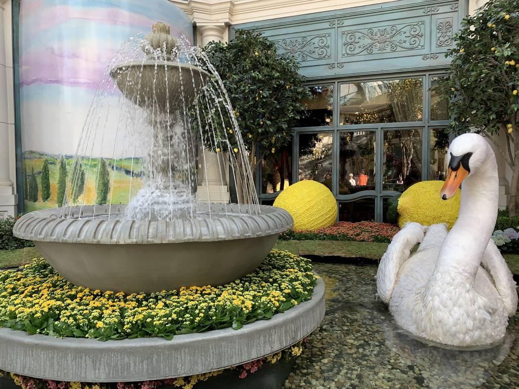 Bellagio Conservatory & Botanical Gardens abrió las puertas de su exhibición de verano. (Mat ...