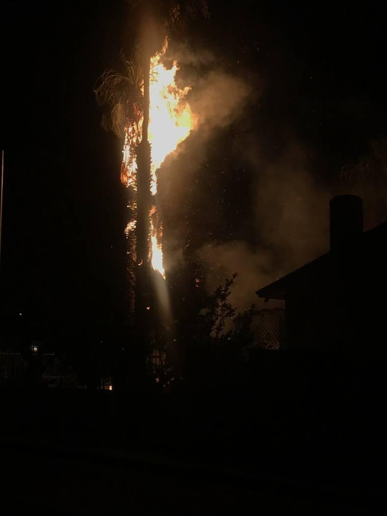 Una palmera en una casa en Monroe Avenue y N Street estaba ardiendo el jueves, 4 de julio de 20 ...