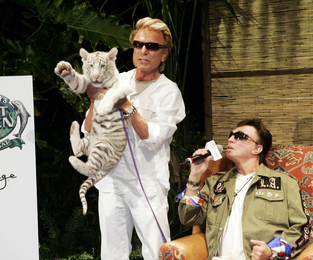"""Siegfried Fischbacher, a la izquierda, sostiene a """"Star"""", una hembra de tigre blanco de 12 sema ..."""