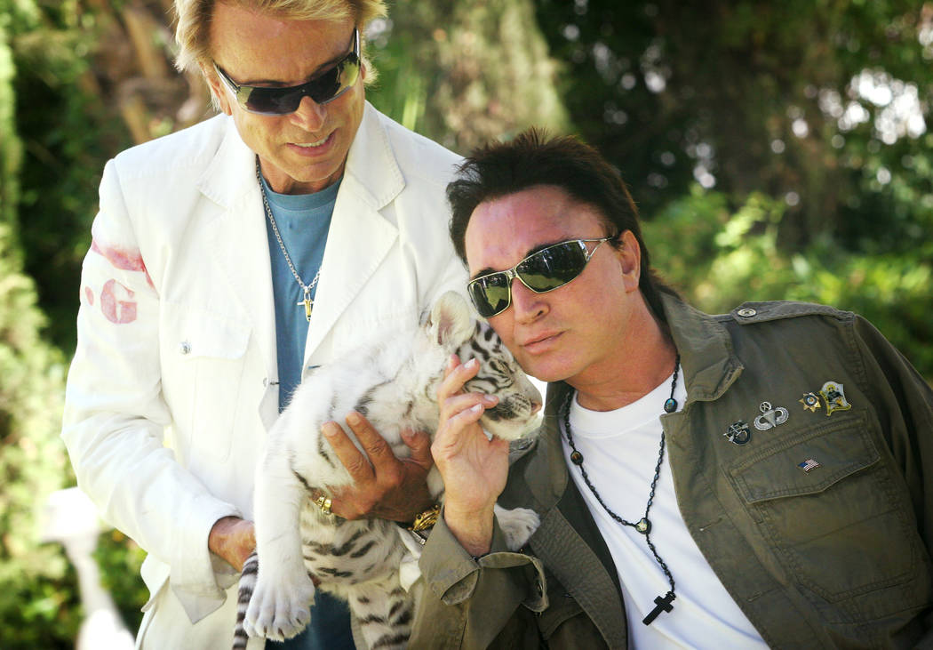 Siegfried Fischbacher, a la izquierda, junto a su socio del mundo del espectáculo, Roy Horn, m ...