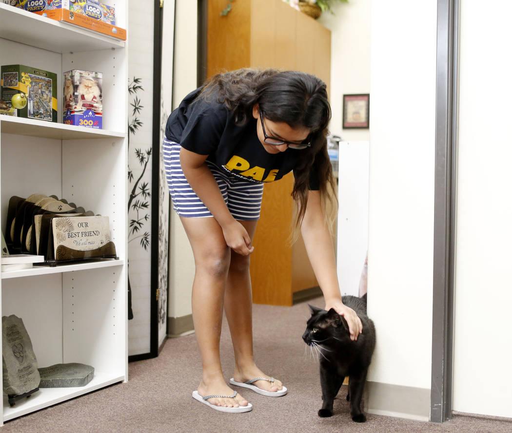 Anaisa Maestas, de 13 años, acaricia un gato en el Rescued Treasures Cat Cafe el martes, 6 de ...