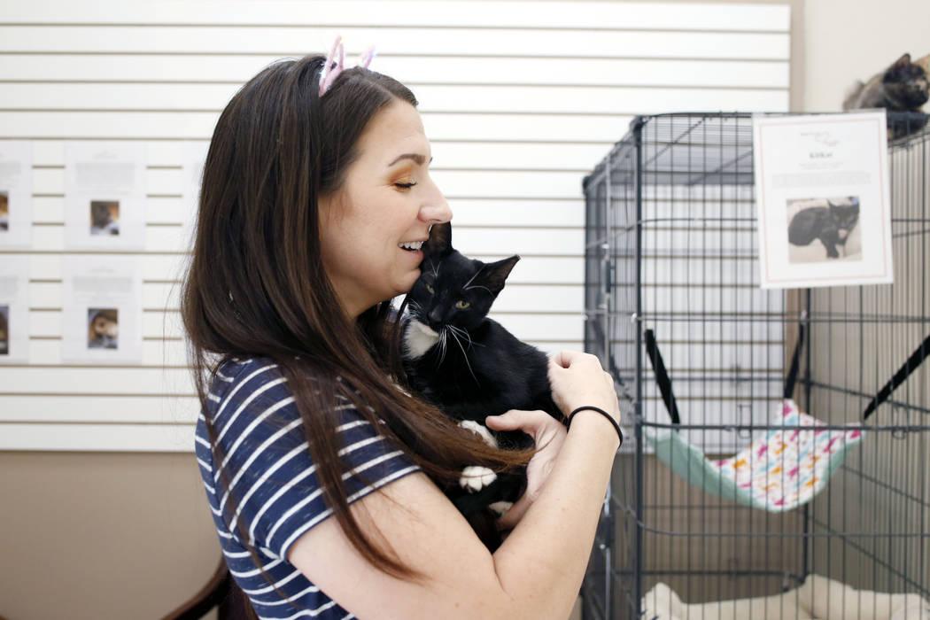 La voluntaria Kali Waddilove, sostiene un gatito adoptable en el Rescued Treasures Cat Cafe el ...
