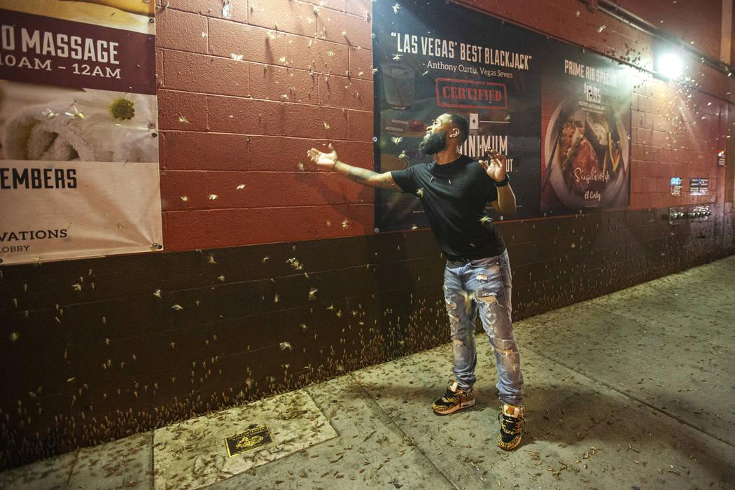 Dorian Williams, de Houston, echa un vistazo a los saltamontes fuera de El Cortez en el centro ...