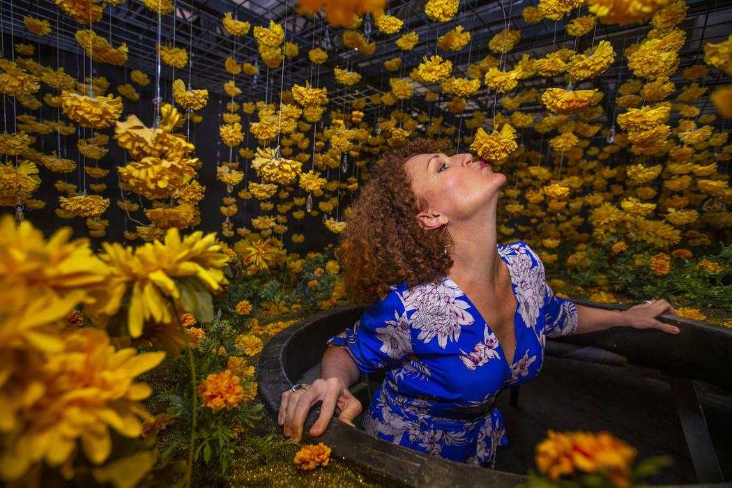 Tevis Holboron besa una flor en Superbloom Room en Happy Place en Mandalay Bay el miércoles, 2 ...