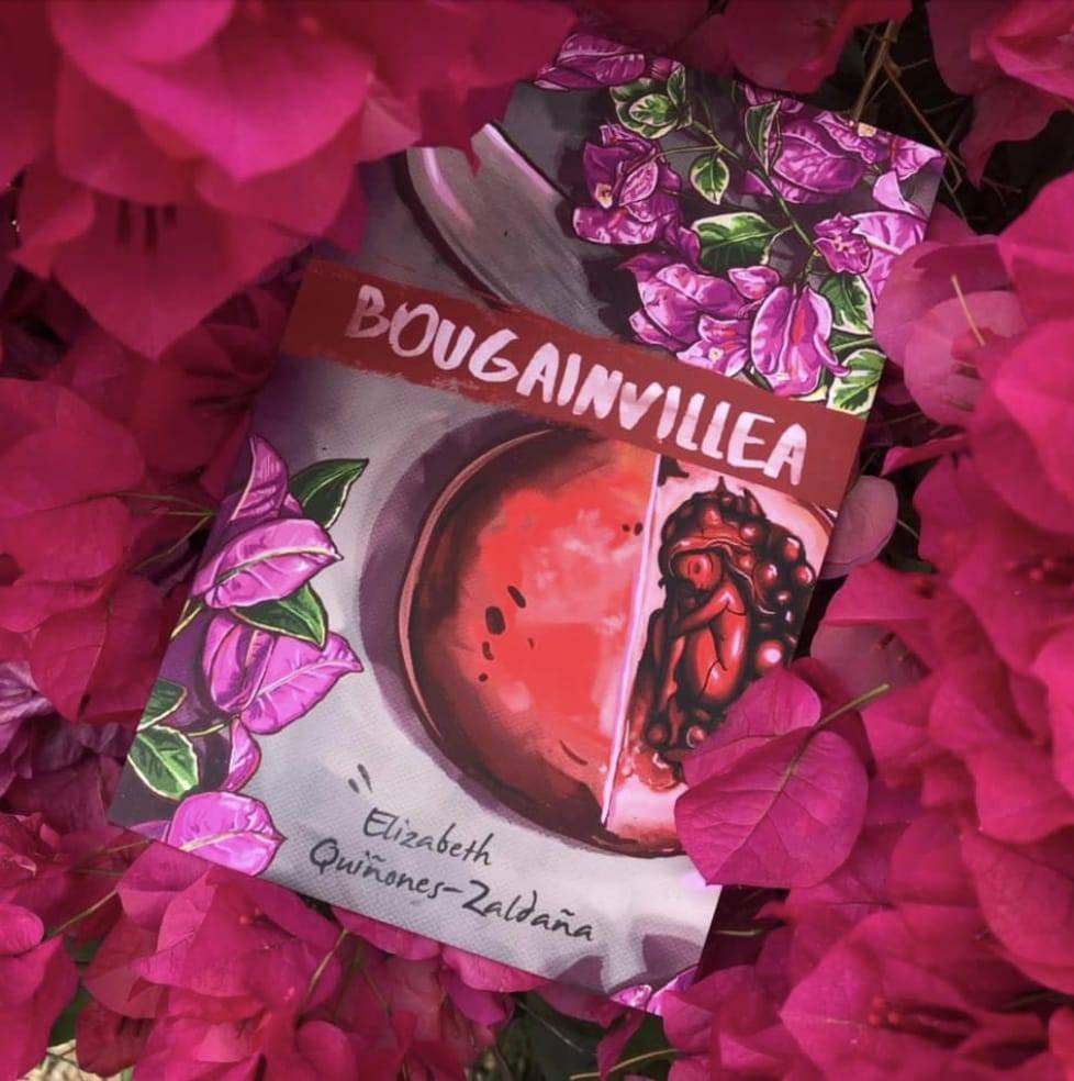 El libro Bugambilias es su debut como autora, ha publicado en antologías de poemas del Condado ...