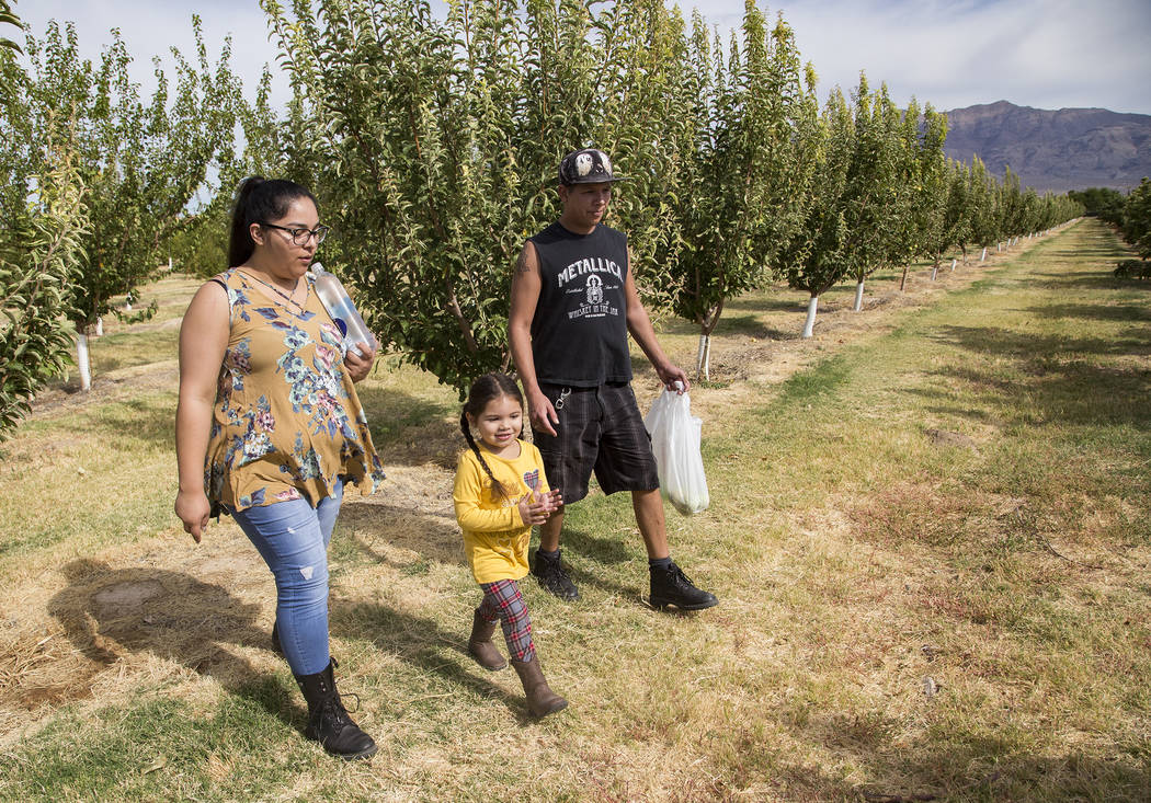 Gennive Banda, su esposo, Jerry Reyes, y su hija caminan por el campo en Gilcrease Orchard en L ...
