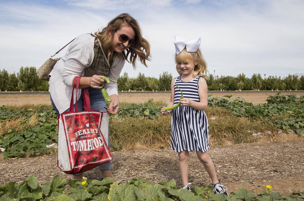 Christine García ayuda a su hija, Natalie García, de 4 años, a recoger pepinos en Gilcrease ...