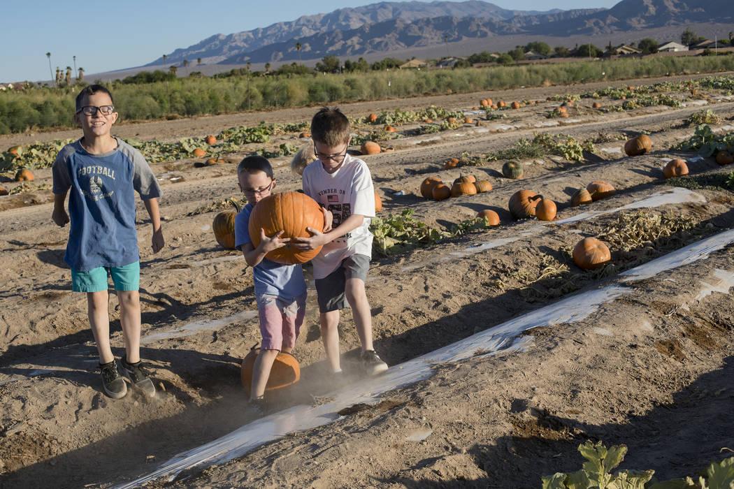 Dominic W., de 9 años, de izquierda a derecha, camina junto a sus hermanos Dennis W., de 7 añ ...