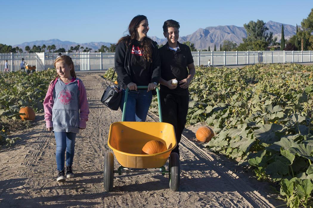 Melissa Swasey, en el centro, busca calabazas con su hija, Ella Swasey, de 9 años, a la izquie ...