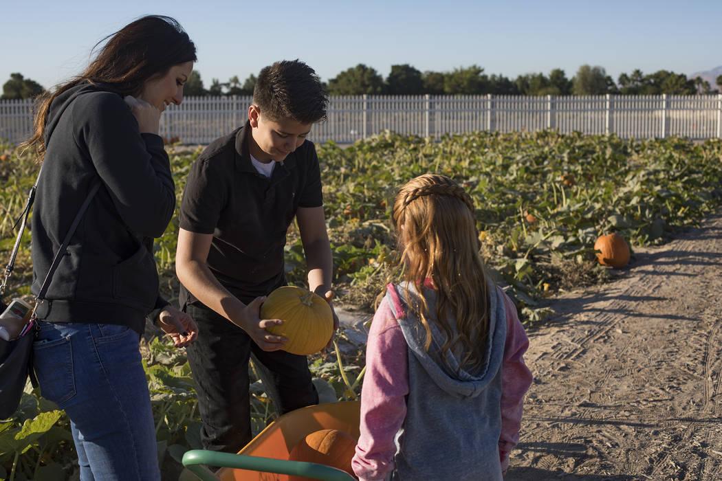 Melissa Swasey, a la izquierda, observa a su hijo, Luke Swasey, de 11 años, y a su hija, Ella ...
