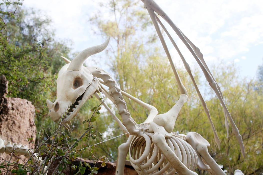 Decoraciones para la familia en Haunted Harvest de Springs Preserve en Las Vegas el jueves, 17 ...