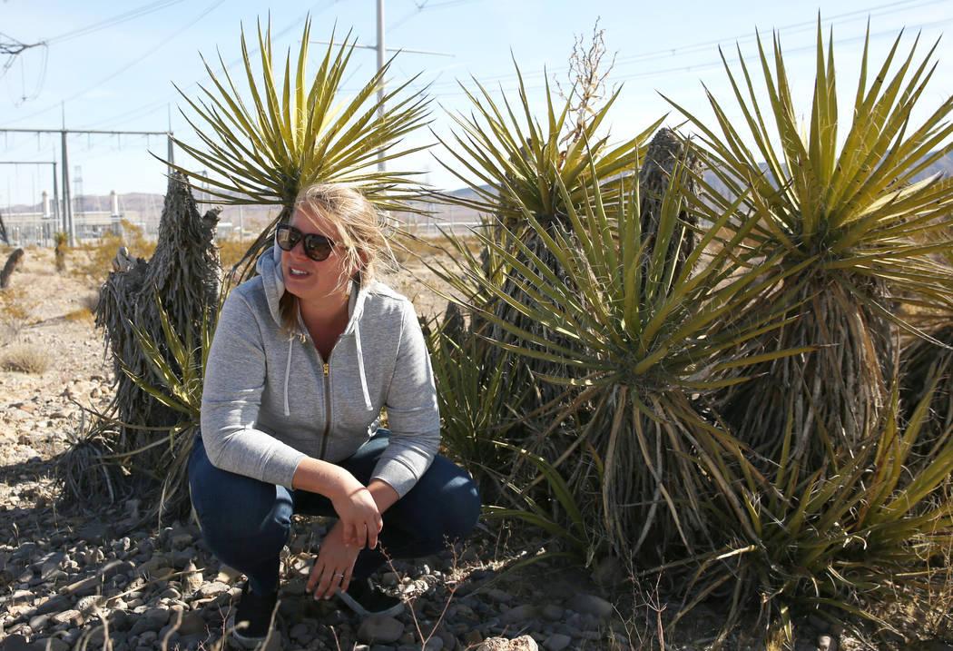 Lara Kobelt, especialista en recursos naturales de la Oficina de Administración de Tierras, Di ...