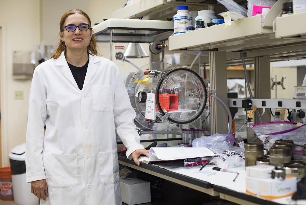 La doctora Libby Hausrath en su laboratorio en la Universidad de Las Vegas en Las Vegas, jueves ...