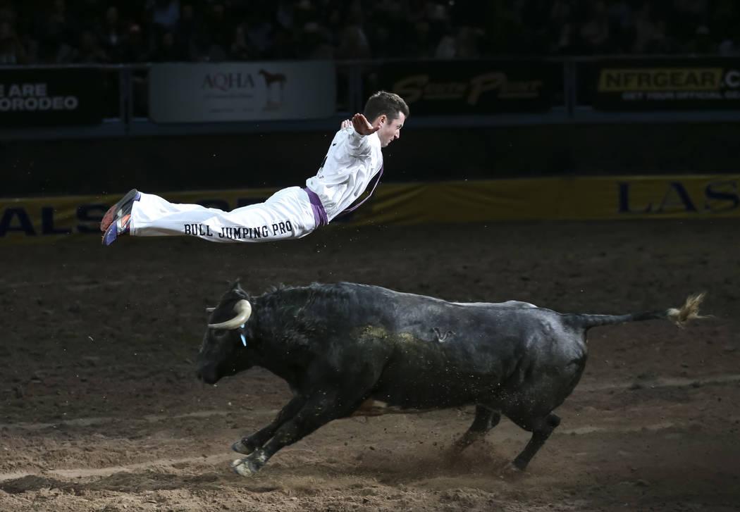 El profesional de Bull Jumping, Emmanuel Lataste, salta sobre un toro corriendo durante una pre ...