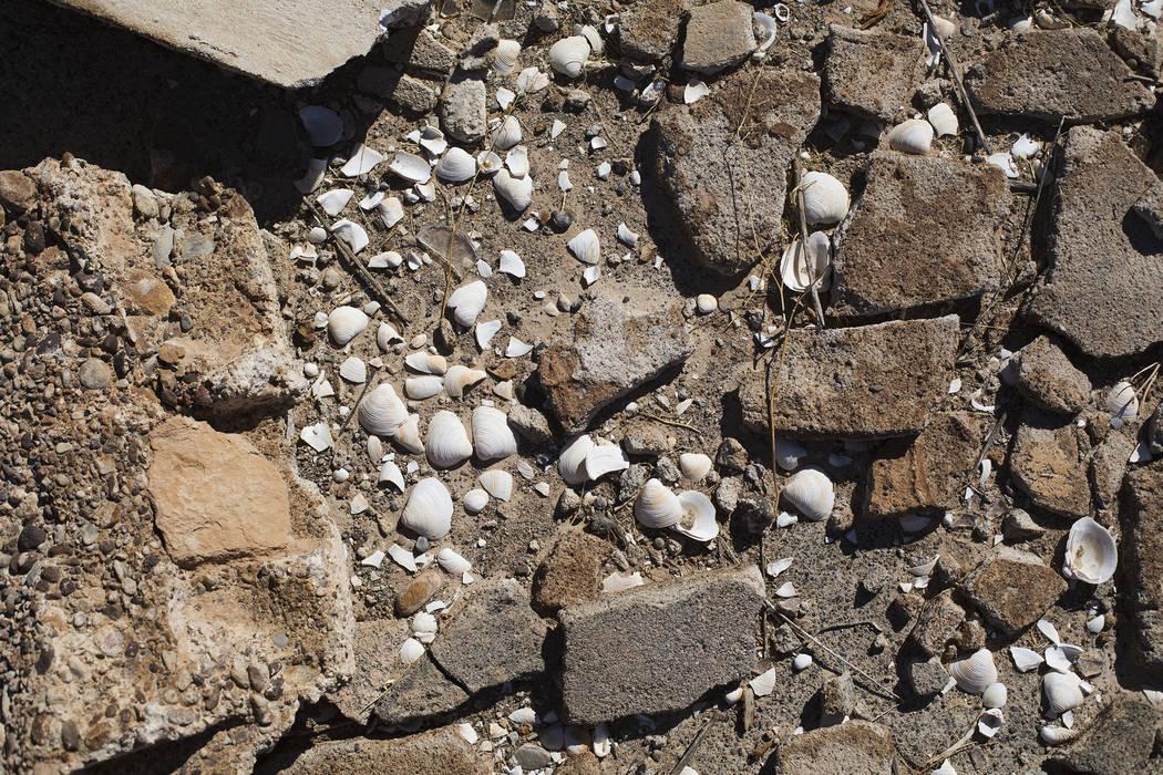 Botellas y escombros rotos en el suelo en St. Thomas, en el Área de Recreación Nacional del L ...
