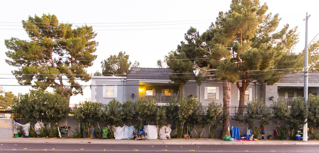 Gente erige hogares temporales entre los árboles de la avenida E. Twain, cerca del parque fami ...