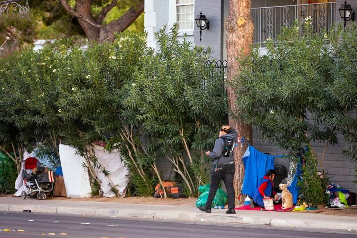 Gente erige hogares temporales entre los árboles de la avenida E. Twain cerca del parque famil ...