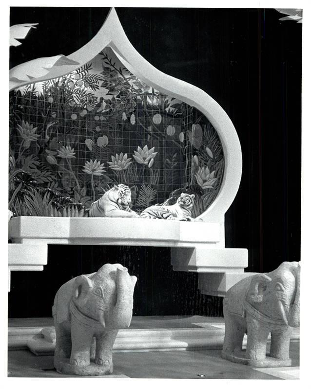 Tigres blancos en reposo en su trono en su propio hábitat en The Mirage. (Wayne Kodey / Las Ve ...