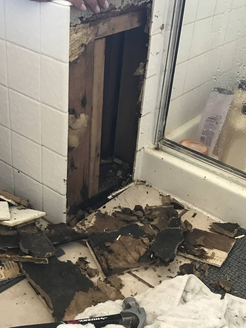A mold infestation was discovered in the master bathroom of a King Futt's PFM rental home in La ...