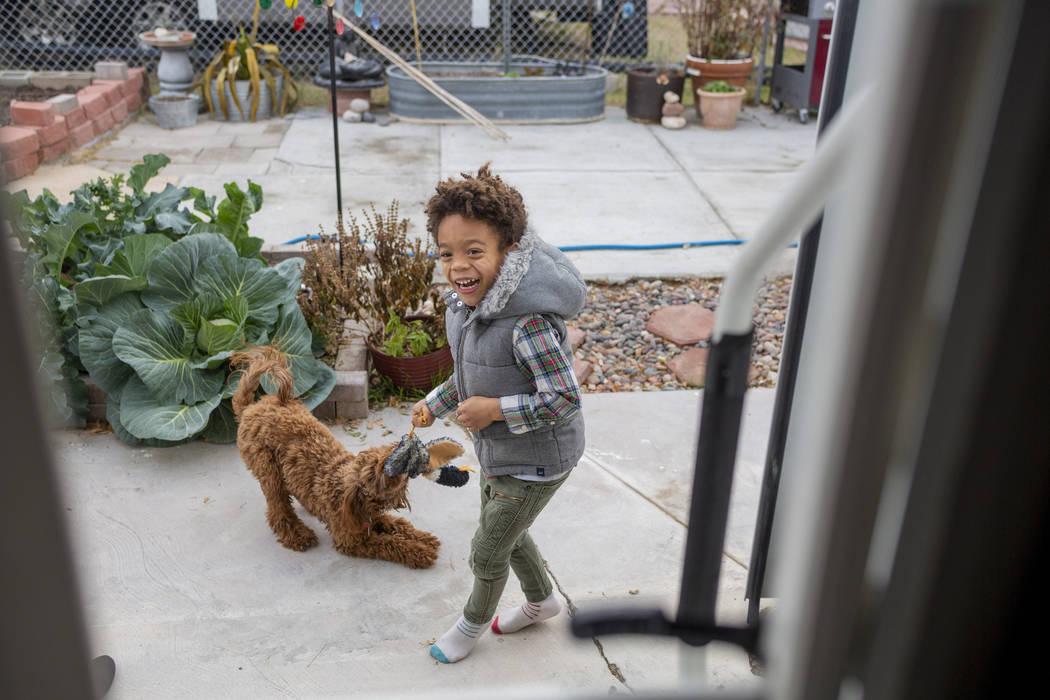 Olamide Ajayi, de 6 años, juega con Nalulani, el perro de terapia de su mentora Lisa Bernauer, ...