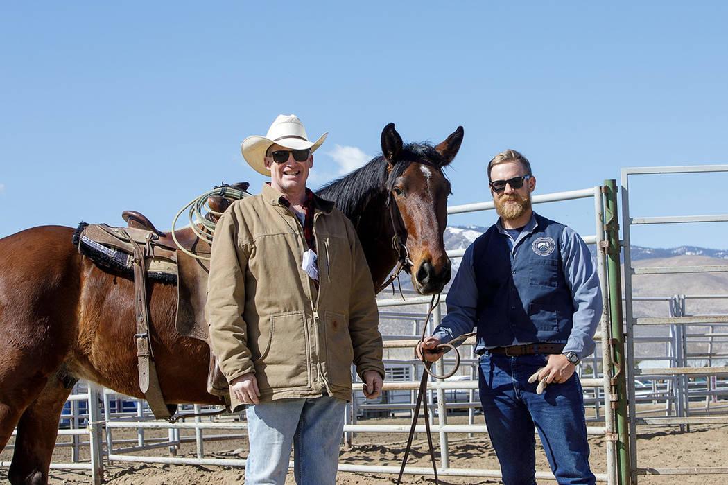 Este es uno de los 13 caballos salvajes adoptados el sábado, 22 de febrero de 2020 en el Centr ...