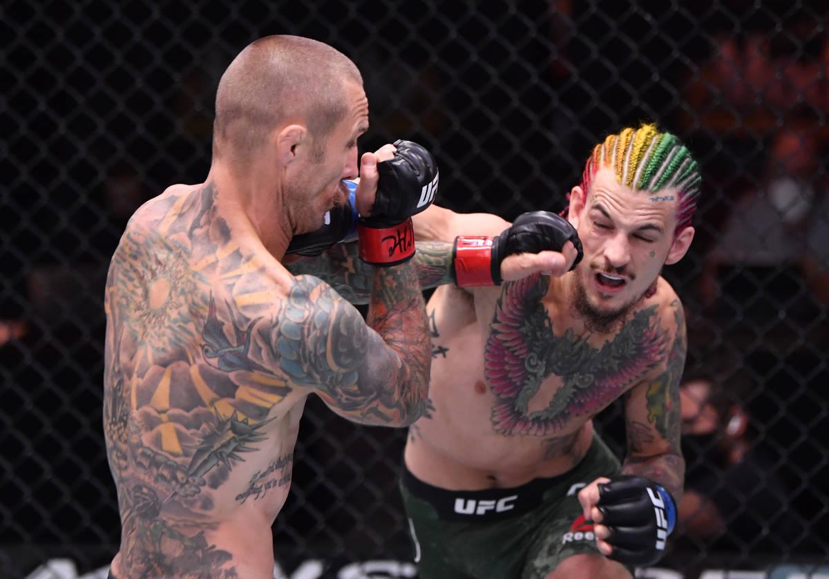 (D-I) Sean O'Malley golpea a Eddie Wineland en su combate de peso gallo durante el evento UFC 2 ...