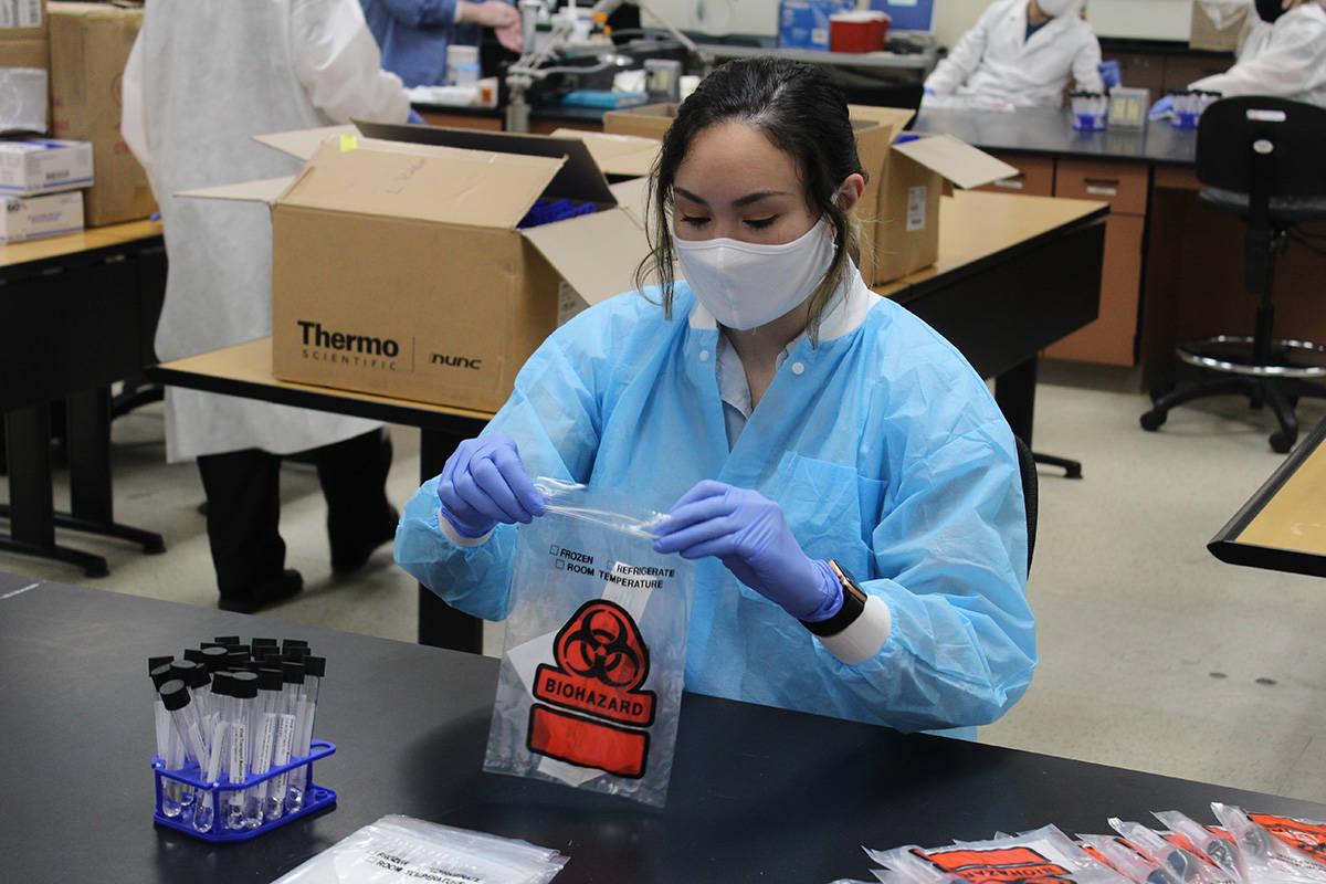 Fueron 7 semanas lo que colaboró esta clase de laboratorio con el SNHD. Miércoles 1 de julio ...