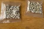 Mujer de Las Vegas recibe un misterioso paquete de semillas de China