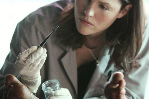 Se dice que Jorja Fox está en conversaciones para volver a interpretar su personaje de Sara Si ...