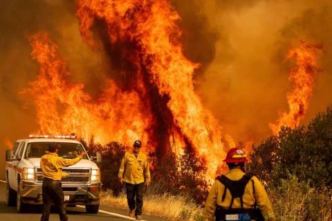Las llamas de los incendios LNU Lightning Complex saltan por encima de Butts Canyon Road el dom ...