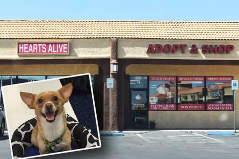 Fotografía de archivo del exterior de las instalaciones de Hearts Alive Village Las Vegas. Se ...