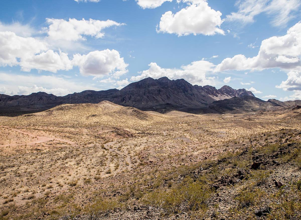 Vista a las montañas. (Tonya Harvey Real Estate Millions)