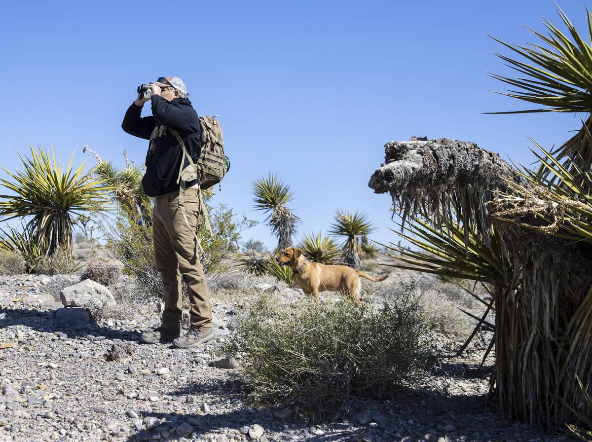 Christian Daniels, de 15 años, recupera globos perdidos en el desierto con su perro, Ruby, el ...