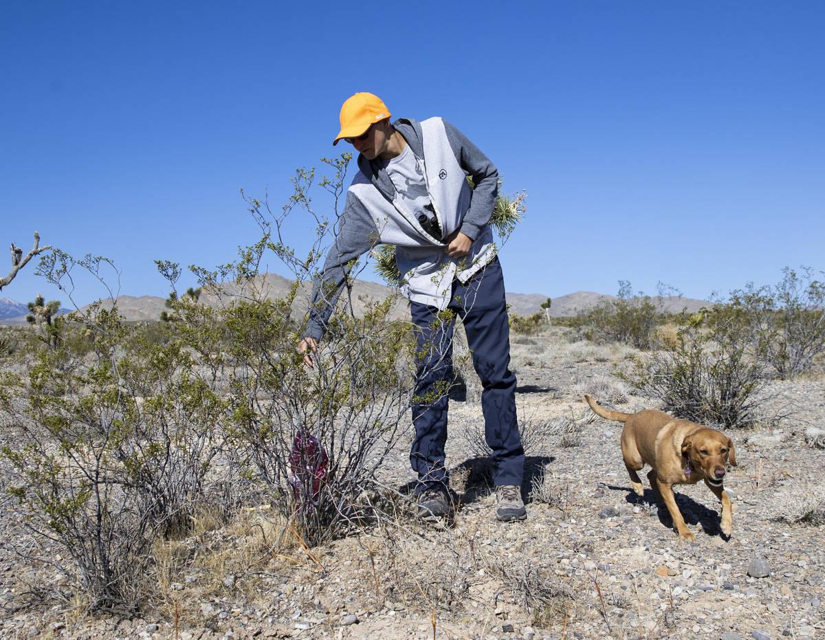 Christian Daniels, de 15 años, recupera globos perdidos en zonas desérticas con su perro, Rub ...