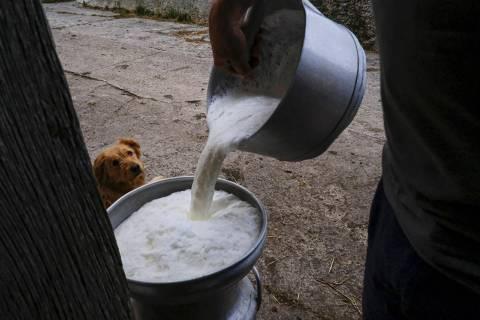 En esta foto de archivo, un hombre rellena un recipiente con leche, en la pequeña localidad pi ...