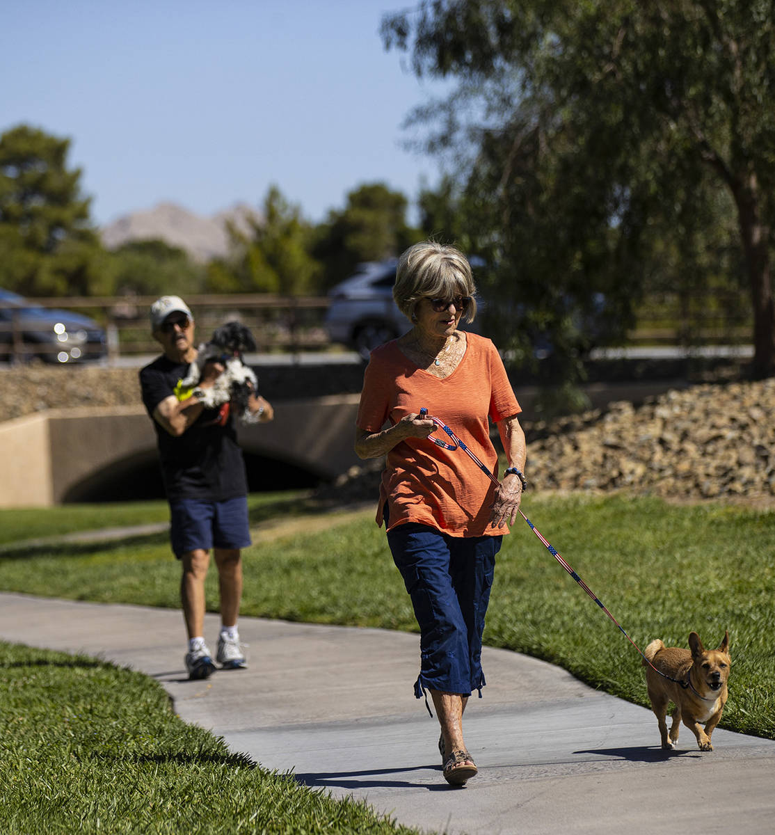 Carol Liberty pasea a su perro, Mikey, en Sun City Summerlin el viernes, 28 de mayo de 2021. (C ...