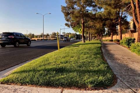 Tráfico pasa por un paisaje de césped en Green Valley Parkway, en los suburbios de Henderson, ...