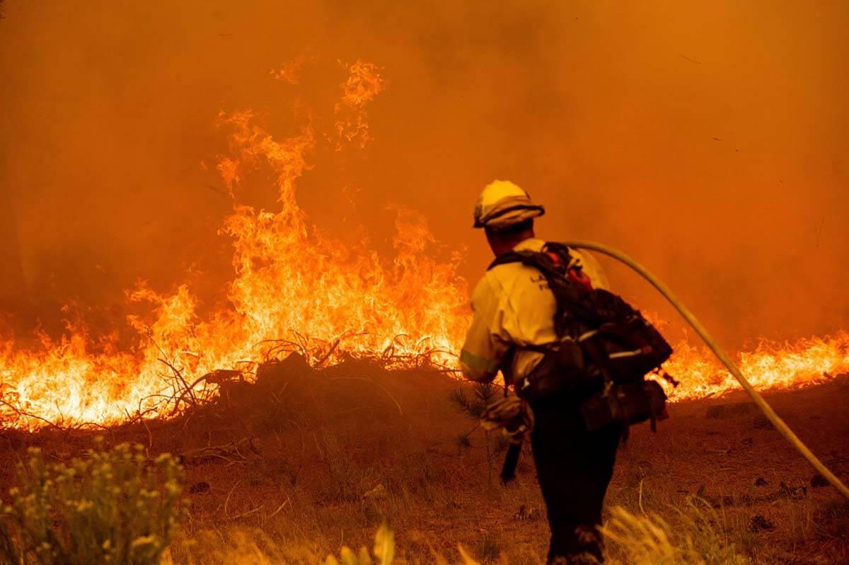 """Un bombero lucha contra el """"Caldor Fire"""" en la Highway 89, el martes 31 de agosto de 2021, ce ..."""